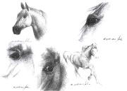 hobune-detailid