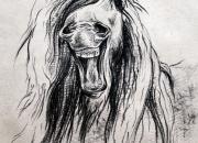 hobune-3