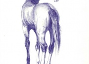 hobune-jalgimas