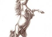 hobune-pysti