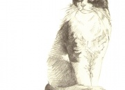 kass-miku